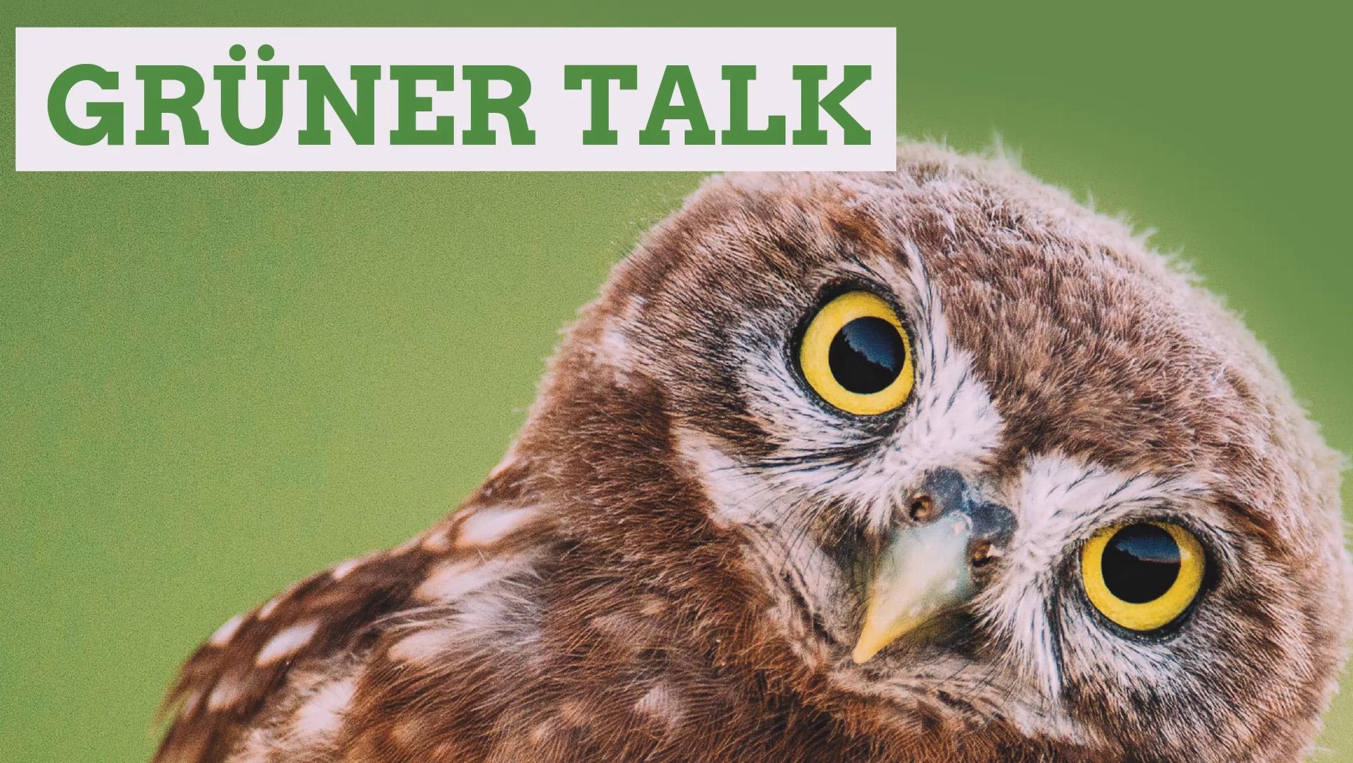 Grüner Talk Tegernsee #1